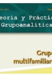 Teoría y práctica grupoanalítica vol 2